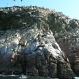 Las Islas Ballestas son unas islas del océano Pacífico, próximas a la costa del Perú. Se encuentran al sur de Lima, en las cercanías de la ciudad de Pisco y […]