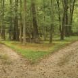 Cada paso en la vida implica una elección. Según los especialistas, lo importante no es solo afrontarlas, sino ser conscientes de que se puede ser presa de ellas y sus […]