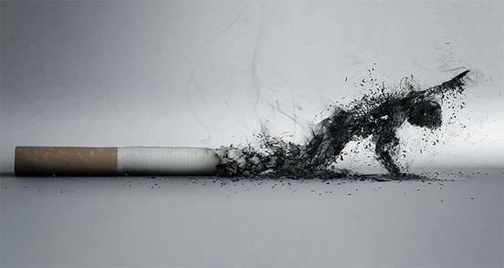 Las enfermedades vinculadas al consumo de tabaco fueron definidas por la OMS, como el mayor problema médico del Siglo XX. La situación alcanzó en la segunda mitad del mismo, el...