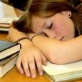 El sueño es alimento para el cerebro. Durante el sueño se desarrollan importantes funciones del organismo y de la actividad cerebral. La falta de sueño puede ser nociva, incluso mortal […]