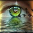 «Amarse con los Ojos Abiertos» es el título de un libro es el título de una novela escrita por Jorge Bucay y Silvia Salinas y publicada en el año 2000 […]